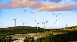 Introducing New Renewable Energy Options for our UK QuickBooks Employees & Customers