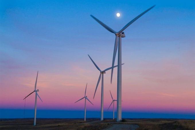 Rows of wind turbines